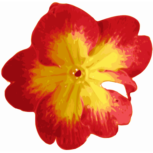 Traced vector flower