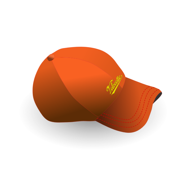 Baseball cap with text vector image
