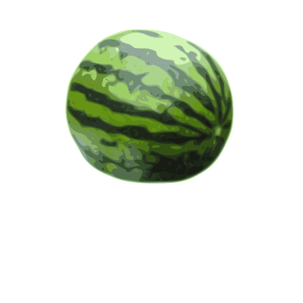 Watermelon vector illustration