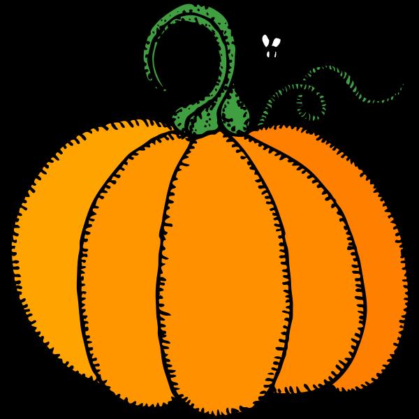 Orange pumpkin vector drawing