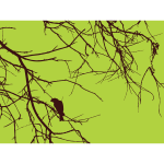 Bird on the branch vector drawing
