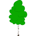 Vector graphics of young birch in color
