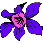 Purple flower-1572773640