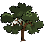 Vector clip art of wide oak tree