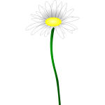 Simple color illustration of a simple daisy