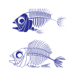 Fish skeleton vector graphics