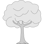 Drawing of thin trunk tree