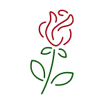 Rose lineart vector image