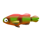 Colorful small fish