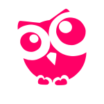 Owl animation
