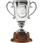 Silver cup 3