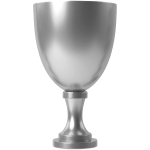 Silver cup 4