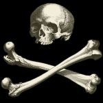 Skull and bones with black background