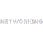 Low Poly Networking No BG