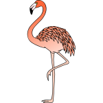 Flamingo 3 (colour)