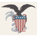 US Eagle Shield