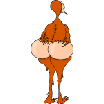 Bare-Bottom Bird
