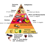 Food Pyramid in German