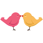 Love Birds Isolated