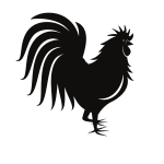 Rooster silhouette monochrome art