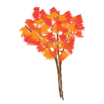 Maple tree in autumn vector illustration