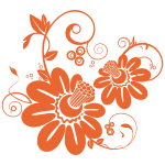 Two orange flowers vector drawing