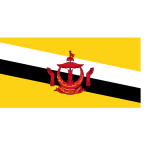 Flag of Brunei Darussalam vector image