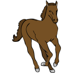 Vector image of young horse running