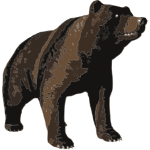 Vector image of huge brown bear