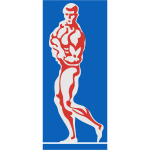 Bodybuilder color vector image