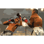 Boxing080905 photoshop 2016052856