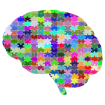 Brain Jigsaw Puzzle Prismatic With Stroke