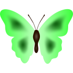 Butterfly in green color
