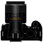 Digital camera Nikon D3100 top view vector clip art
