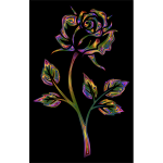 Chromatic Rose