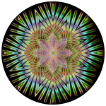 Chromatic Symmetric Mandala