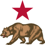 Vector image of bear and star