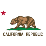 Detail from flag of California Republic vector  image