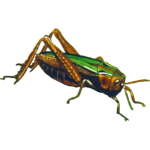 CommonGreenGrasshopper2