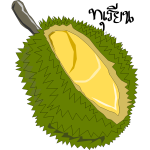 Durian,Thai Fruit