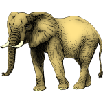Elephant colored in yellow