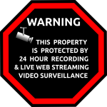 English security surveillance sticker vector image
