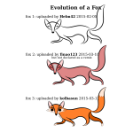 Evolution of a Fox