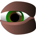 Vector clip art of green eye