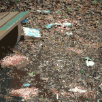 Garbage around a forest bench 2015071515
