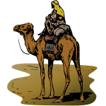 Image of camel with rider in vector