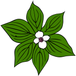 Flower with green leaves vector art