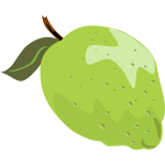 Lime vector illustration with leaf