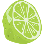 Half a lime fruit vector drawing