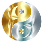 Gold And Silver Yin Yang No Background